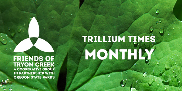 Trillium Times Banner