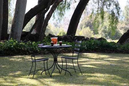Oak Grove Retreat Garden