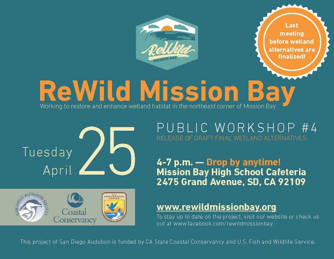 ReWild Public Workshop