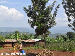 RDC_Image