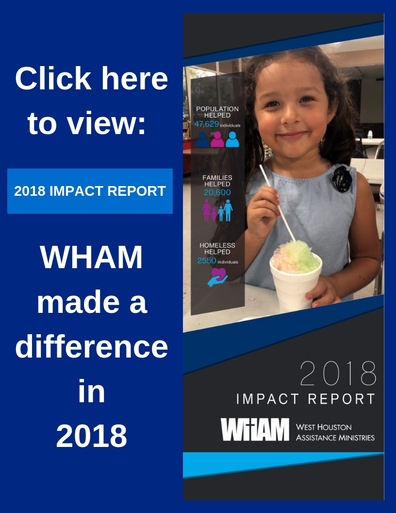 click to view impact report